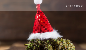 Last-Minute Gift Guide: Cannabis Christmas Edition